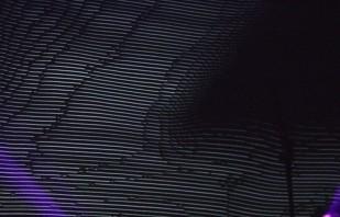 essesntial-2015